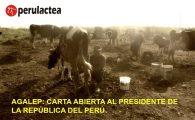Carta Abierta de los Ganaderos Lecheros del Perú al Presidente de la República